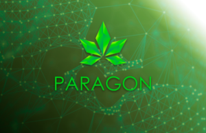 Paragon ICO Scam Consider The Consumer